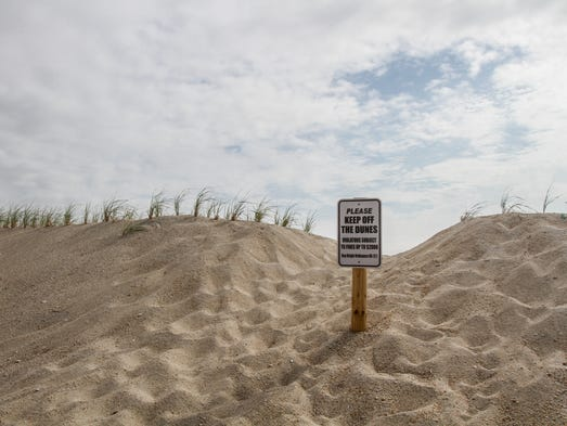 Sea Bright, NJ - An area of recently planted dune grass that has been trampled on to make new paths on to the beach.