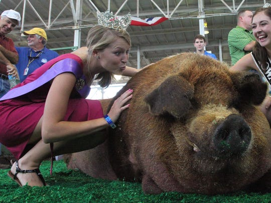 2012 Iowa Pork Princess, Sterling Schnepf of Granville gets a laugh out of her sister, Paris Schnepf, 2011 Iowa State Fair Queen, as she pretends to give the Big Boar a kiss. (Andrea Melendez/The Register)