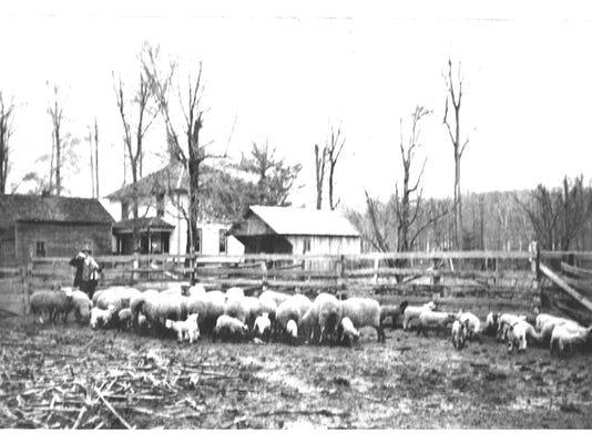 hausfeld farm