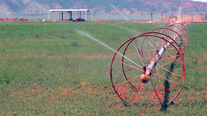 Sidewheel sprinklers run in a field in Southern Utah.