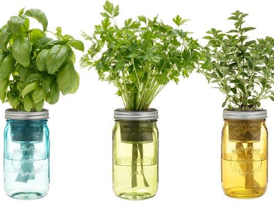 636482592523168424-Italian-Herb-Jars.jpg
