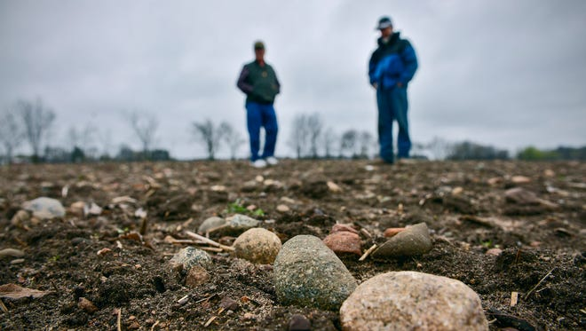 Looking for Lake Superior agates can be a bit like a treasure hunt. Butch Goldenstein of St. Cloud, left, and Ed Opatz of Holdingford, both members of the Cuyuna Rock, Gem & Mineral Society, are in the habit of scanning the ground as they walk. On April 19 they had permission to walk a Stearns County field.