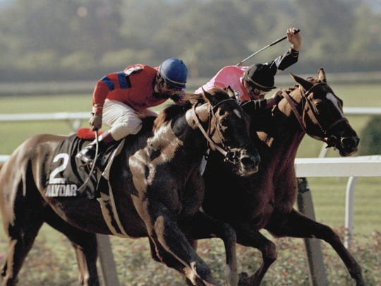 Jockey Steve Cauthen takes Affirmed (right) toward the finish line as Alydar is ridden home by Jorge Velasquez in the 1978 Belmont Stakes.