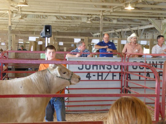 Dylan Schrock, 18, shows his a 1,340-pound champion Charolais steer Friday at the livestock auction for the Johnson County Fair. Schrock's niece nicknamed the steer Olaf.