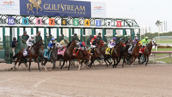 Horses leaving the starting gate at Gulfstream Park, the site of one suspiciously bad ride.