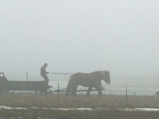 A Clark County Amish farmer drives a manure wagon using