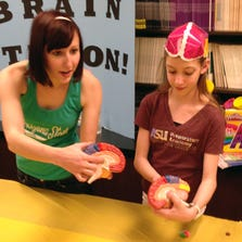 Stephanie Koebele (left) with Emma Baier teaches students about different human brain regions at the annual Brain Fair.