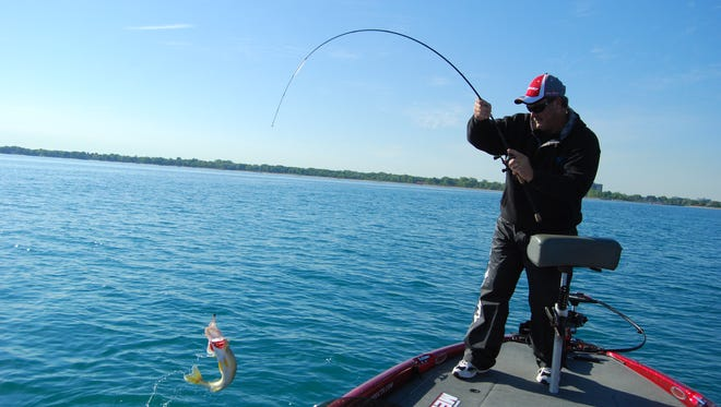 Todd Steele, of Port Huron, lands a Lake Huron walleye.