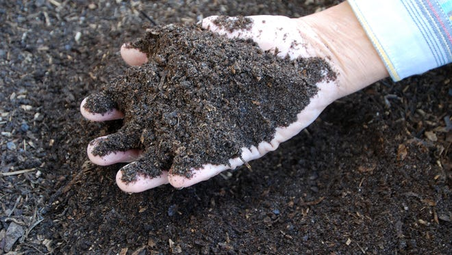 Compost nourishes plants organically by increasing the nutrient and water holding capacity of the soil.