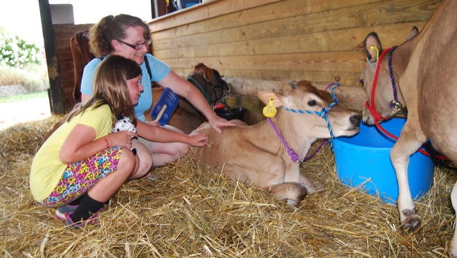 Amanda Verdon, of Williamsburg, and her daughter, Danica, 7, pet a cow in the dairy building at the Clermont County Fair in 2016.