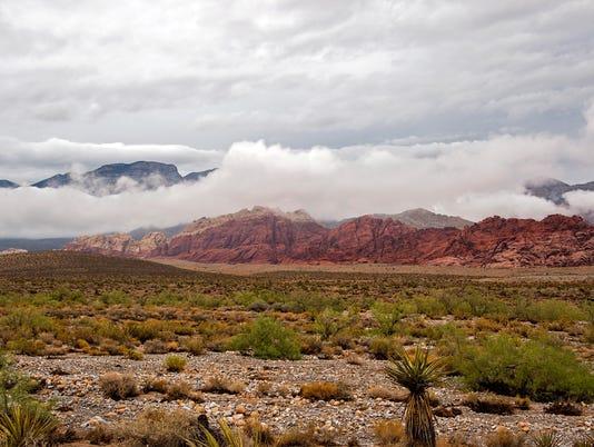 Tropical Depression Ivo Causes Rain In Las Vegas