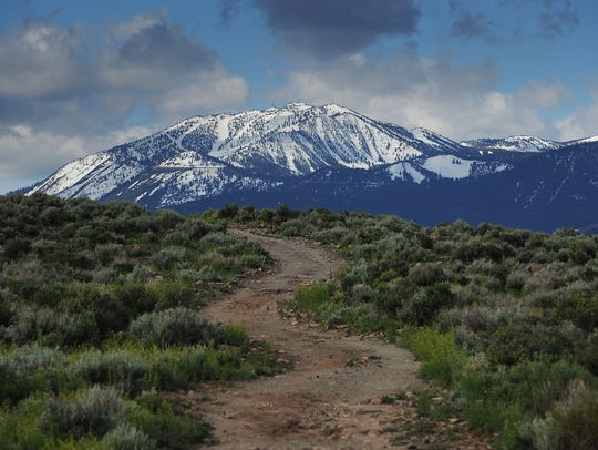A hiking trail in the Huffaker Hills leads towards