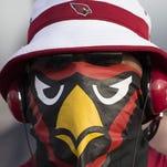 Arizona Cardinals fans – 2016