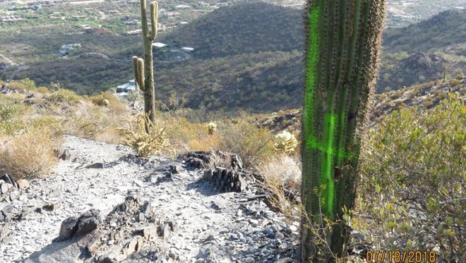Maricopa County Sheriff's Office is seeking information about this vandalism in Cave Creek