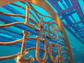 Lady Luck is the latest addition to Shipwreck Park