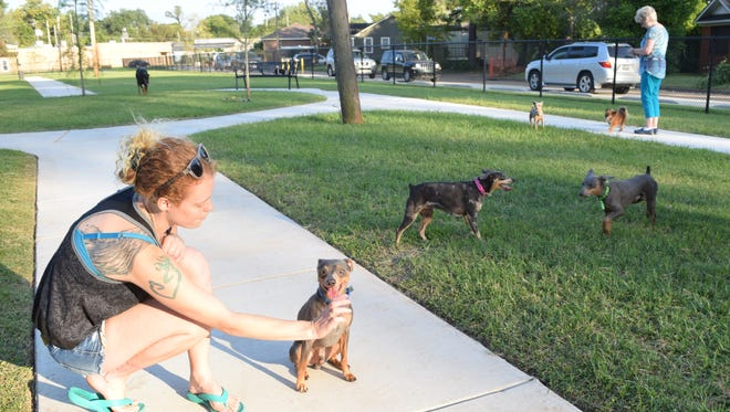 Hevan Richards plays with Doof, one of her four mini doberman pinschers at the new dog park in Alexandria.