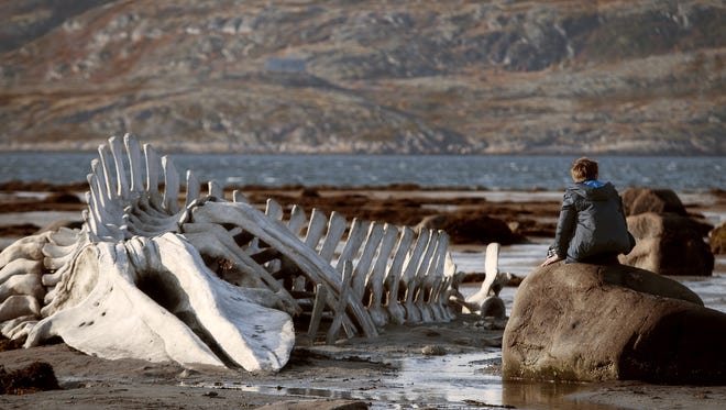 """Sergey Pokhodaev appears in a scene from the film, """"Leviathan."""""""