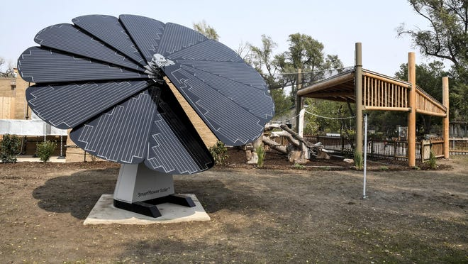 """A SmartFlower solar unit, or a """"Solar Sunflower"""", provides power for the Primate Forest-Lemurs! and flamingo exhibit buildings at Lee Richardson Zoo. The unit can retract when not in use and then open, to resemble a flower, when needed. It is located south of the exhibit."""