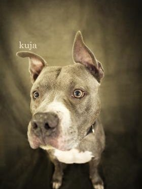 Kuja is a big, goofy, fun-loving boy!