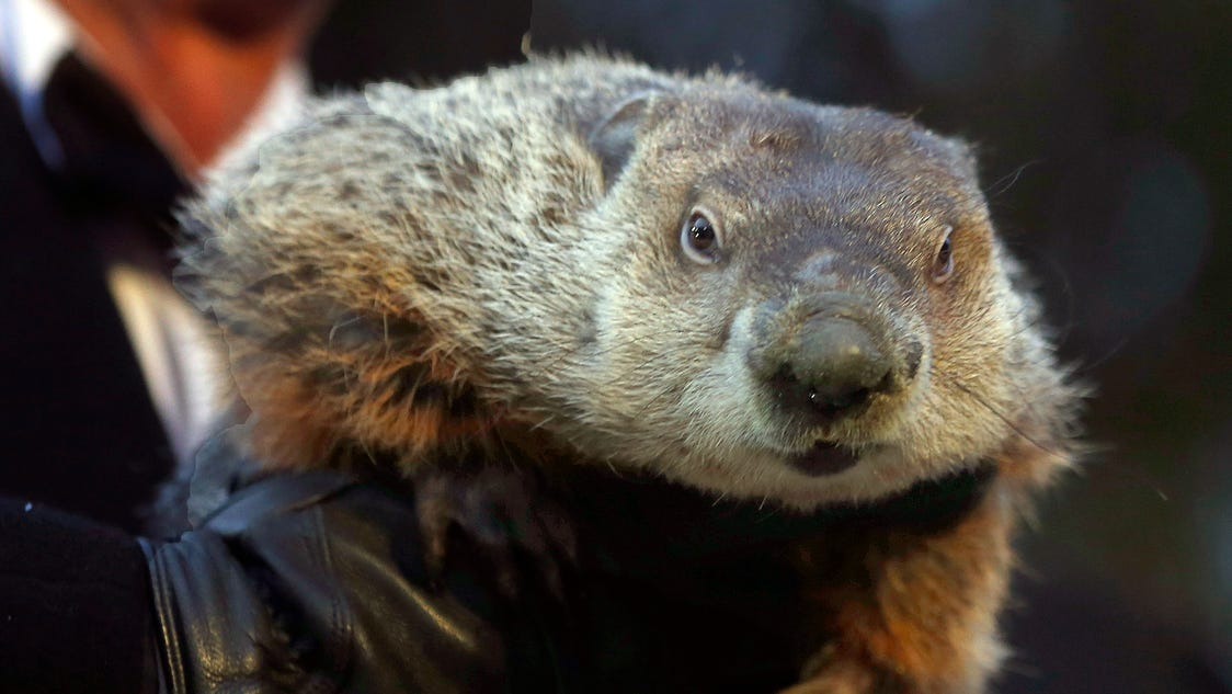 Groundhog Day Is Sunday: Will Phil See His Shadow?