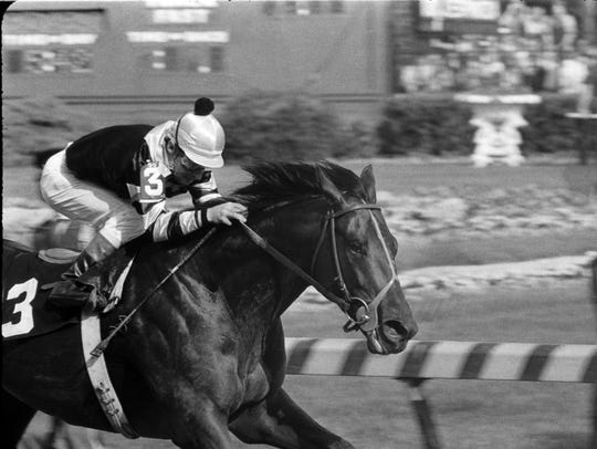 Seattle Slew, with jockey Jean Cruguet aboard, wins