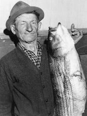 Louis Nicolik of Poughkeepsie might have been fishing for shad but he opted not to throw back this 35-pound striped bass that made its way into his net in the Hudson River in May 1964. Nicolik, who was fishing with his brother, Leo, said the 40-inch-long fish was the largest he'd ever caught.