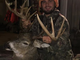 Chase Wiedow, of Wausau, shot this 13-pointer with