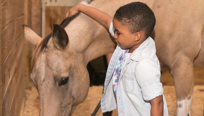 """Quintin Ross had a special moment with MANE's """"Nutty"""" while deciding which horse to sponsor during Raise the Roof 2016."""