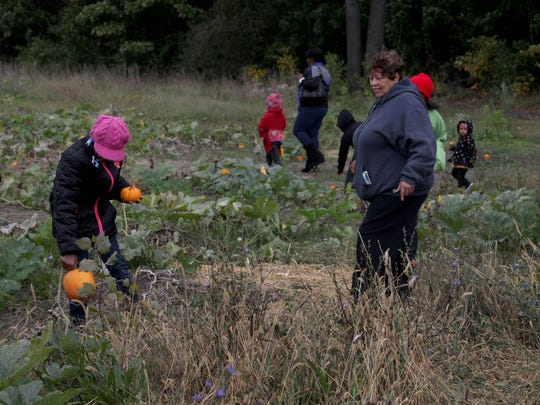 Pumpkin picking during the Palmer Park Harvest Fest.  Family activities included hayrides, bonfires, arts and crafts activities, along with pony rides, a mobile petting zoo and more.