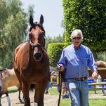 Trainer Bob Baffert walks Triple Crown winner American Pharoah after the horse arrived at Santa Anita Park in Arcadia, Calif., on Thursday, June 18, 2015. (AP Photo/Ringo H.W. Chiu)