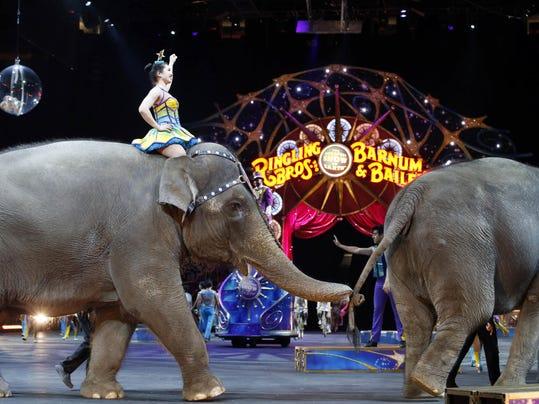 Last Circus Elephants