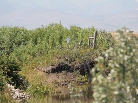 Bellview Road crash site2.JPG