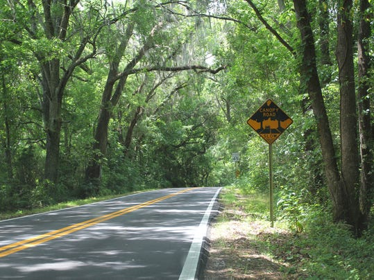 canopy-road-sign-on-Old-St-Augustine-by-Doug-Alderson.jpg