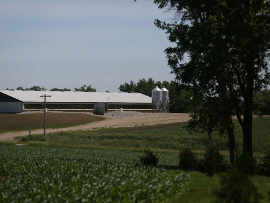 The view from Gary Netser's yard includes a small confined animal feeding operation (CAFO) on Wednesday, June 8, 2016, in Iowa County. Two confinements were built across the road from Nester's home and because they are considered small operations they are not subject to regulations about distance from homes.