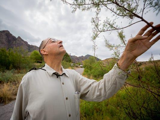 New Mexico Native Plants