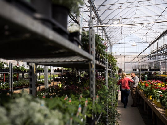 "Autumn (left) and Kim Horrocks discuss business amidst rows of plants in a greenhouse at Horrocks Farm Market in Delta Township. ""If you're successful with your customers then they will tell you what they want, and you'll get more room to accommodate what they want,"" Kim said."