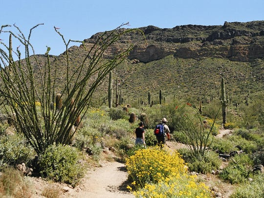 Hiking at Usery Mountain Regional Park