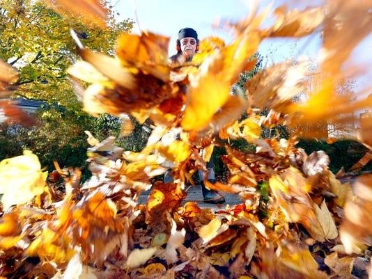leaf blower generic art