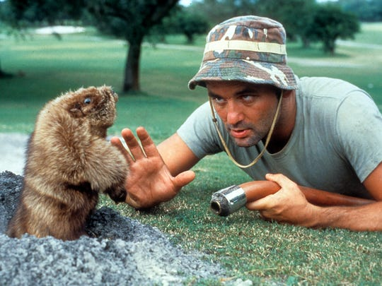 "Carl Spackler (Bill Murray) hunts down a destructive gopher using increasingly explosive methods in ""Caddyshack."""