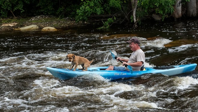 Ted Rinckey from Eaton Rapids and his dog Charlie, make it through the rapids at the new Eaton Rapids Outdoor Recreation Center Sunday, August 21, 2016.