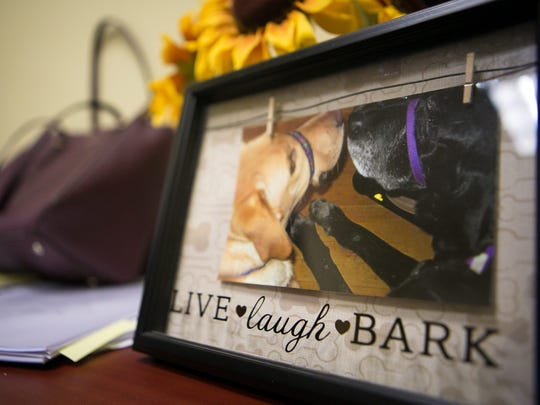 Alexandra Joyce has a picture of her service dogs, DeeDee and Shandy, in her office.