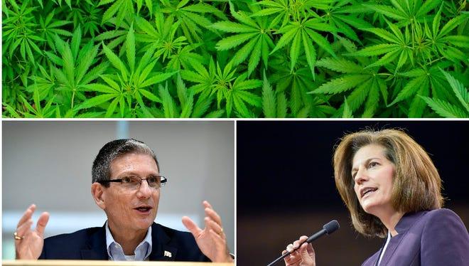 Guns, marijuana and a big U.S. Senate race are on the ballot for Reno-Sparks residents this November.