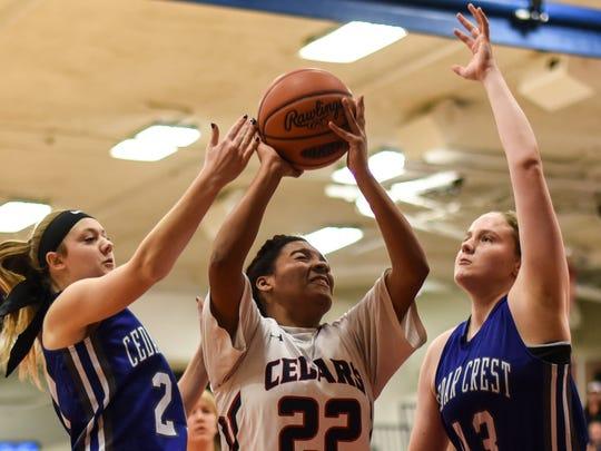 Cedar Crest's Kelsey Guth and Alyssa Austin defend