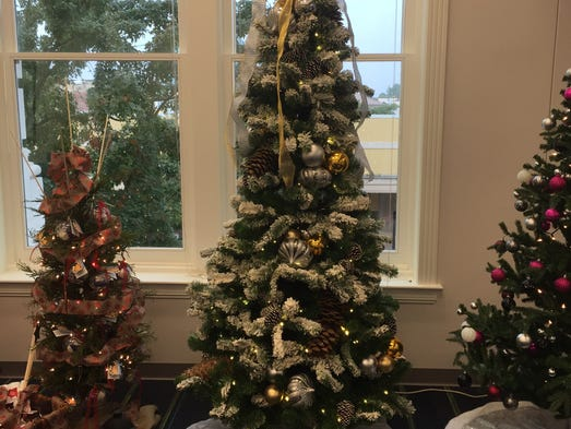 Need a tree how 39 bout one of these for 10th avenue salon pensacola