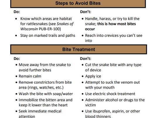 Information on how to avoid and treat rattlesnake bites