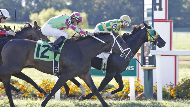 Kentucky-bred Cammack won the Claiming Crown Emerald Stakes Prep at Kentucky Downs on Sept. 11.