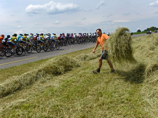 The pack passes next to a farmer  during the 4th stage, a 160,4 km race, from Heiden to Ossingen, at the 78. Tour de Suisse UCI ProTour cycling race, near Guettingen, Switzerland, on Tuesday, June 17, 2014. (AP Photo/Keystone,Jean-Christophe Bott)