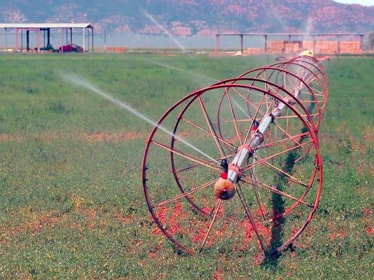 sidewheel sprinkler.jpg
