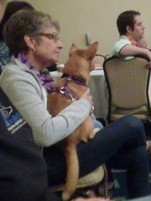 Socks and Cissy Sumner listen to a lecture at the Pet Professional Guild Summit.