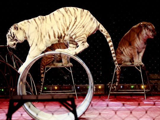 The Shrine Circus returns to Springfield April 8-10